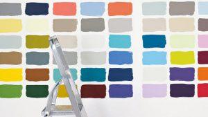 flexa kleuradviseur limburg